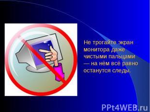 Не трогайте экран монитора даже чистыми пальцами — на нём всё равно останутся сл