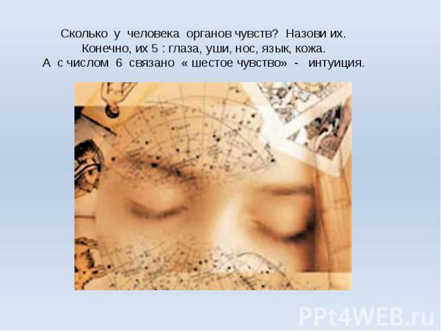 Сколько у человека органов чувств? Назови их.Конечно, их 5 : глаза, уши, нос, язык, кожа.А с числом 6 связано « шестое чувство» - интуиция.