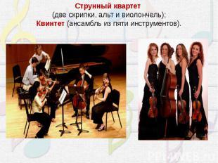 Струнный квартет(две скрипки, альт и виолончель);Квинтет (ансамбль из пяти инст
