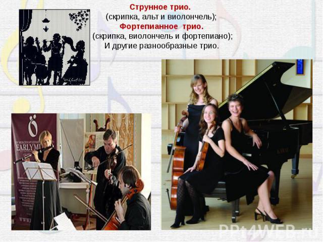 Струнное трио. (скрипка, альт и виолончель);Фортепианное трио.(скрипка, виолончель и фортепиано);И другие разнообразные трио.