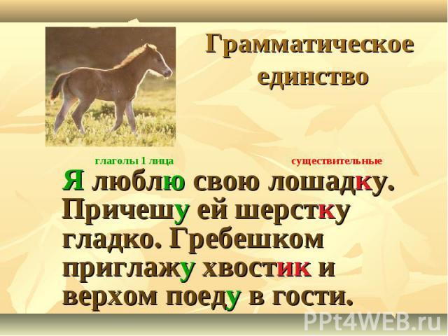 Грамматическое единство Я люблю свою лошадку. Причешу ей шерстку гладко. Гребешком приглажу хвостик и верхом поеду в гости.
