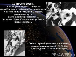 19 августа 1960 г. был запущен корабль – спутниктипа «Восток», с собаками Белка