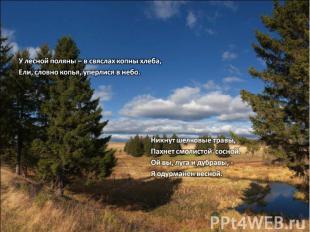 У лесной поляны – в свяслах копны хлеба,Ели, словно копья, уперлися в небо.Никну