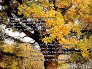 Дуб Видят немцы — задрожали дубы столетние,На дубах от свиста листы валятся.Побр