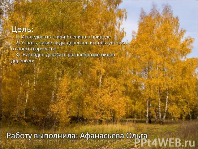 Цель: 1) Исследовать стихи Есенина о природе 2) Узнать, какие виды деревьев использует поэт в своем творчестве 3) Наглядно доказать разнообразие видов деревьев Работу выполнила: Афанасьева Ольга