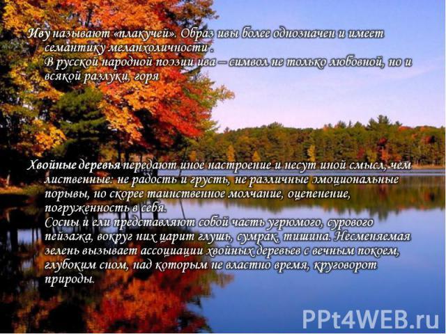 Иву называют «плакучей». Образ ивы более однозначен и имеет семантику меланхоличности .В русской народной поэзии ива – символ не только любовной, но и всякой разлуки, горя Хвойные деревья передают иное настроение и несут иной смысл, чем лиственные: …