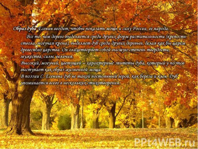 Образ дуба Есенин вводит, чтобы показать мощь и силу России, ее народа. Все то, чем дерево выделяется среди других форм растительности (крепость ствола, могучая крона), выделяет дуб среди других деревьев, делая как бы царем древесного царства. Он ол…