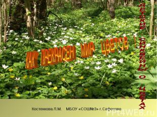 КАК ПРЕКРАСЕН МИР ЦВЕТОВ !Костенкова Л.М. МБОУ «СОШ№3» г.Сафоново