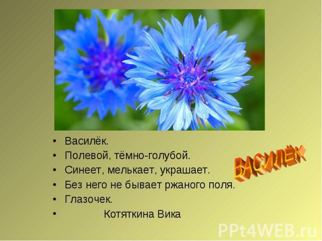 ВАСИЛЁКВасилёк.Полевой, тёмно-голубой.Синеет, мелькает, украшает.Без него не бывает ржаного поля.Глазочек. Котяткина Вика