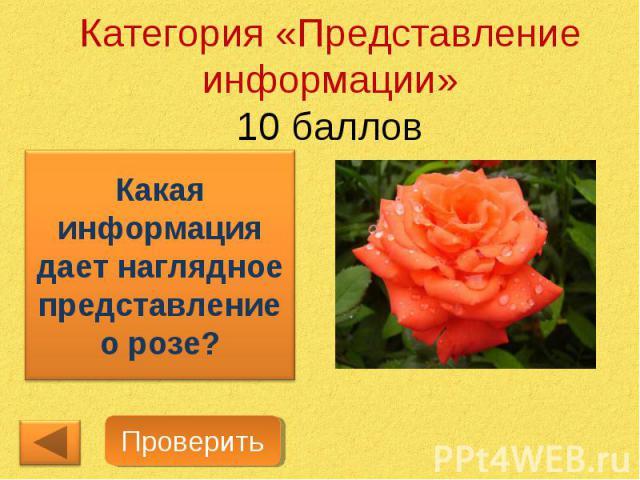 Категория «Представление информации»10 балловКакая информация дает наглядное представление о розе?