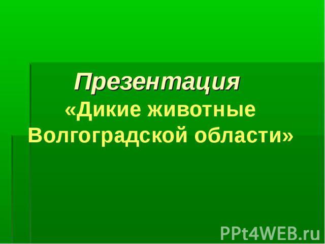 Презентация «Дикие животные Волгоградской области»