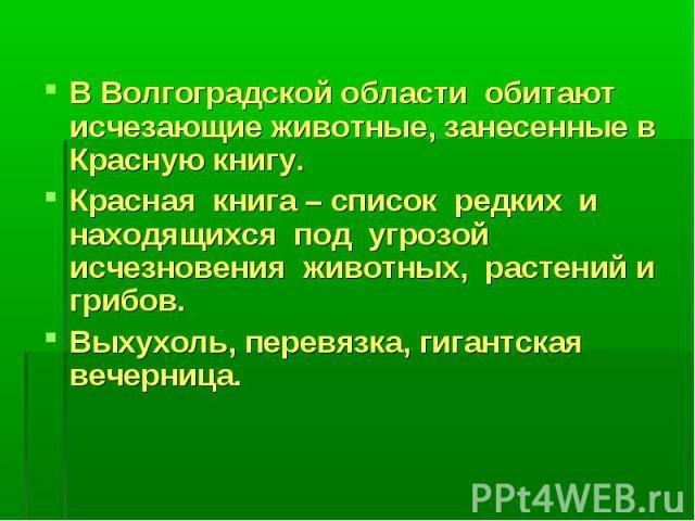 В Волгоградской области обитают исчезающие животные, занесенные в Красную книгу.Красная книга – список редких и находящихся под угрозой исчезновения животных, растений и грибов. Выхухоль, перевязка, гигантская вечерница.