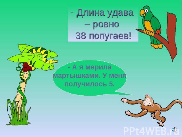 Длина удава – ровно 38 попугаев!- А я мерила мартышками. У меня получилось 5.