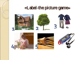 «Label-the picture game»