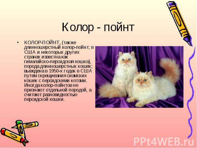 Колор - пойнтКОЛОР-ПОЙНТ, (также длинношерстный колор-пойнт; в США и некоторых других странах известна как гималайско-персидская кошка), порода длинношерстных кошек; выведена в 1950-х годах в США путем скрещивания сиамских кошек с персидскими котами…