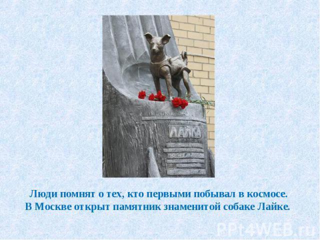 Люди помнят о тех, кто первыми побывал в космосе. В Москве открыт памятник знаменитой собаке Лайке.