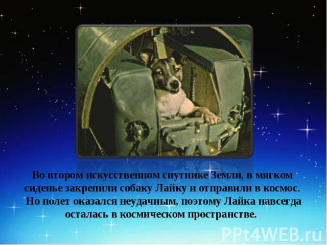 Во втором искусственном спутнике Земли, в мягком сиденье закрепили собаку Лайку и отправили в космос. Но полет оказался неудачным, поэтому Лайка навсегда осталась в космическом пространстве.