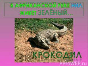 В АФРИКАНСКОЙ РЕКЕ НИЛЖИВЁТ ЗЕЛЁНЫЙ…крокодил