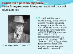 Селекция в растениеводствеИван Владимирович Мичурин - великий русский селекционе