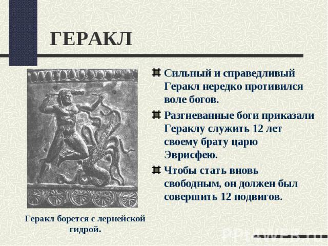 ГЕРАКЛСильный и справедливый Геракл нередко противился воле богов.Разгневанные боги приказали Гераклу служить 12 лет своему брату царю Эврисфею. Чтобы стать вновь свободным, он должен был совершить 12 подвигов.