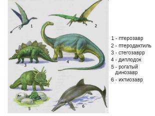 1 - птерозавр 2 - птеродактиль 3 - стегозаврр 4 - диплодок 5 - рогатый динозавр