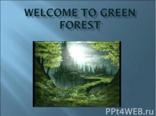 Welcome to Green forest