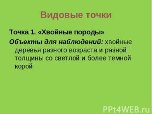 Видовые точкиТочка 1. «Хвойные породы»Объекты для наблюдений: хвойные деревья ра