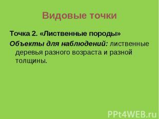 Видовые точки Точка 2. «Лиственные породы»Объекты для наблюдений: лиственные дер