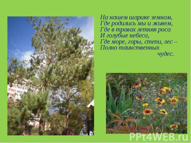 На нашем шарике земном, Где родились мы и живем,Где в травах летняя росаИ голубые небеса,Где море, горы, степи, лес – Полно таинственных чудес.