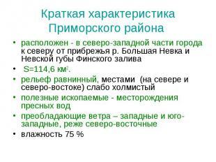 Краткая характеристика Приморского района расположен - в северо-западной части г