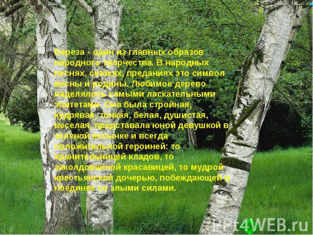 Береза - один из главных образов народного творчества. В народных песнях, сказках, преданиях это символ весны и родины. Любимое дерево наделялось самыми ласкательными эпитетами. Она была стройная, кудрявая, тонкая, белая, душистая, веселая, представ…