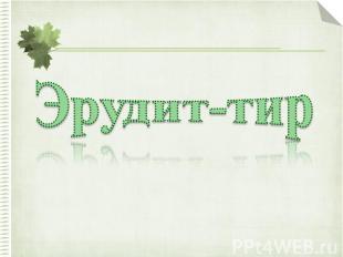 Эрудит-тир