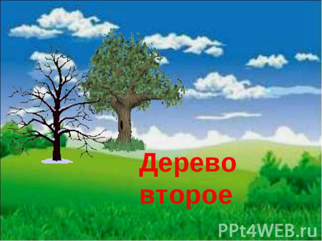 Дерево второе