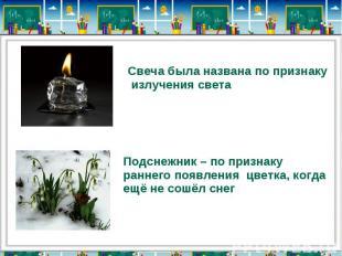 Свеча была названа по признаку излучения светаПодснежник – по признаку раннего п