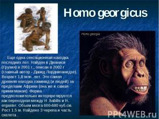 Homo georgicus Еще одна сенсационная находка последних лет. Найден в Дманиси (Гр