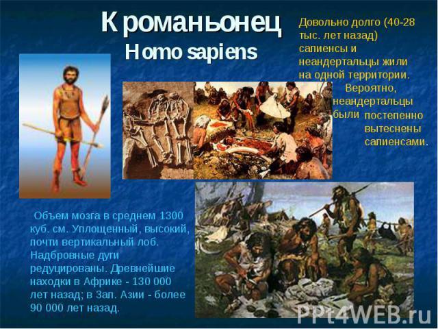 КроманьонецHomo sapiensДовольно долго (40-28 тыс. лет назад) сапиенсы и неандертальцы жили на одной территории. Вероятно, неандертальцы были Объем мозга в среднем 1300 куб. см. Уплощенный, высокий, почти вертикальный лоб. Надбровные дуги редуцирован…