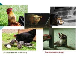 Запишите буквами звуки, которые издают изображённые на фотографиях животные.Как