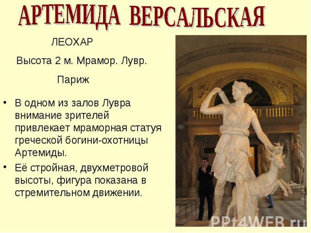 АРТЕМИДА ВЕРСАЛЬСКАЯ ЛЕОХАР Высота 2 м. Мрамор. Лувр. Париж В одном из залов Лувра внимание зрителей привлекает мраморная статуя греческой богини-охотницы Артемиды. Её стройная, двухметровой высоты, фигура показана в стремительном движении.