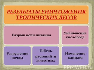 РЕЗУЛЬТАТЫ УНИЧТОЖЕНИЯ ТРОПИЧЕСКИХ ЛЕСОВ