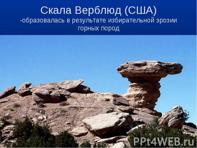 Скала Верблюд (США)-образовалась в результате избирательной эрозии горных пород
