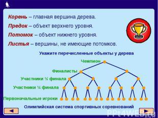 Корень – главная вершина дерева. Предок – объект верхнего уровня.Потомок – объек