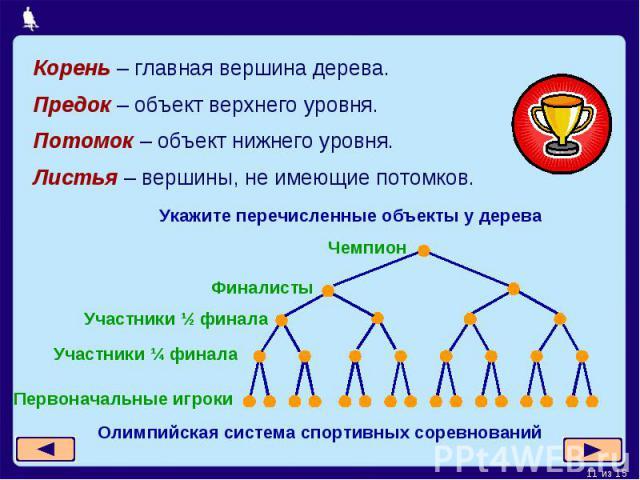 Корень – главная вершина дерева. Предок – объект верхнего уровня.Потомок – объект нижнего уровня.Листья – вершины, не имеющие потомков.