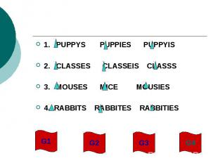 1. PUPPYS PUPPIES PUPPYIS2. CLASSES CLASSEIS CLASSS3. MOUSES MICE MOUSIES4. RABB