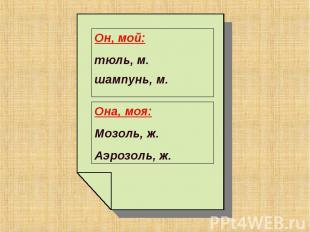 Он, мой: тюль, м.шампунь, м. Она, моя:Мозоль, ж.Аэрозоль, ж.