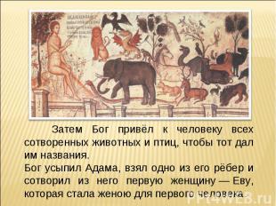 Затем Бог привёл к человеку всех сотворенных животных и птиц, чтобы тот дал им н