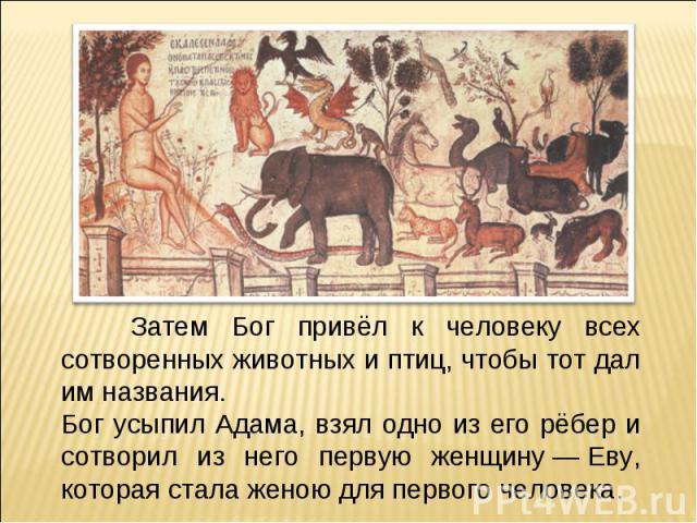 Затем Бог привёл к человеку всех сотворенных животных и птиц, чтобы тот дал им названия.Бог усыпил Адама, взял одно из его рёбер и сотворил из него первую женщину—Еву, которая стала женою для первого человека.