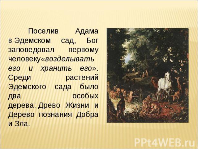 Поселив Адама вЭдемском сад, Бог заповедовал первому человеку«возделывать его и хранить его». Среди растений Эдемского сада было два особых дерева:Древо Жизни и Дерево познания Добра и Зла.