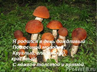 Я родился в день дождливыйПод осиной молодой,Круглый, гладенький, красивый,С