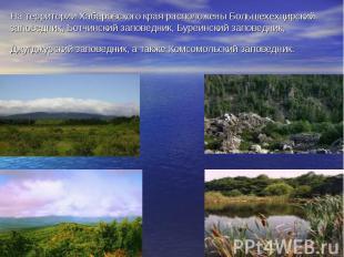 На территории Хабаровского края расположены Большехехцирский заповедник, Ботчинс