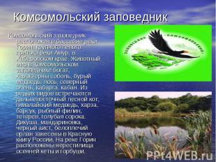 Комсомольский заповедникКомсомольский заповедник расположен в бассейне реки Гори